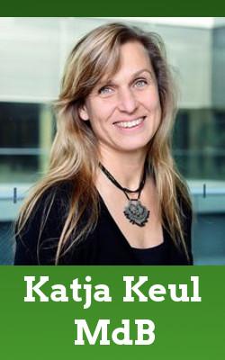Katja Keul (MdB)