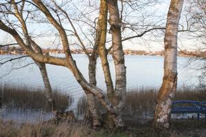 Banter-See-Ufer